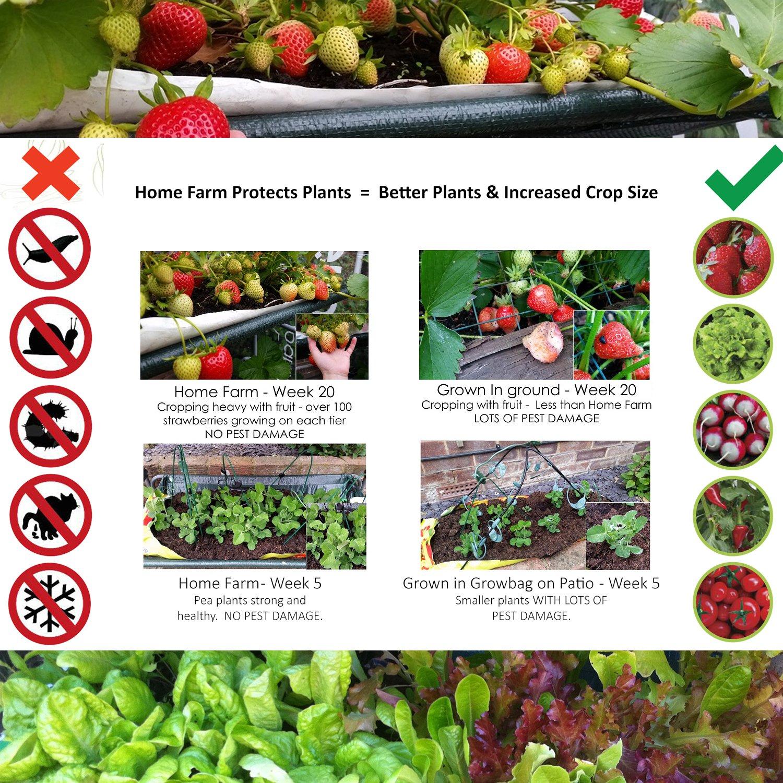 Granja en casa Roamwild, cultiva tus propios vegetales caseros ...