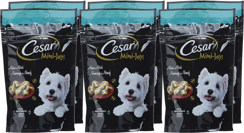 Cesar Perros Snack Perros erli Mini de Fuga de Joys con Queso y Vacuno 6/x 100/g 6/Unidades