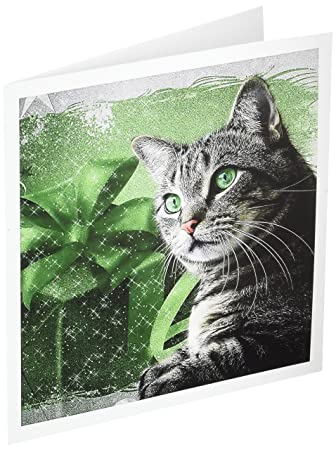 amazon com sweet silver tabby cat green and silver for christmas