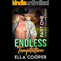 Endless Temptation: An Age Gap Secret Baby Romance (Cowboy's Camp Part One)