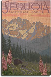 product image for Lantern Press Sequoia National Park, California - Spring Flowers (10x15 Wood Wall Sign, Wall Decor Ready to Hang)