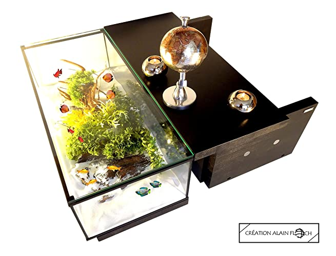 TABLE BASSE AQUARIUM TERRARIUM VOYAGE 40 LED DESIGN UNIQUE ALAIN ...