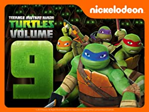 Amazon.com: Teenage Mutant Ninja Turtles Season 9
