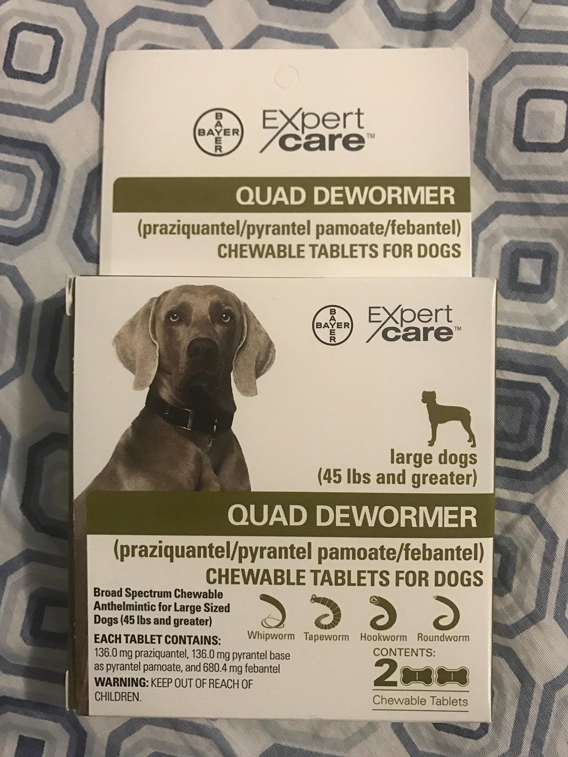 Bayer Animal Health Quad Dewormer Large Dogs (Over 45 lbs) 2 Chewable Tablets by Bayer Animal Health (Image #2)