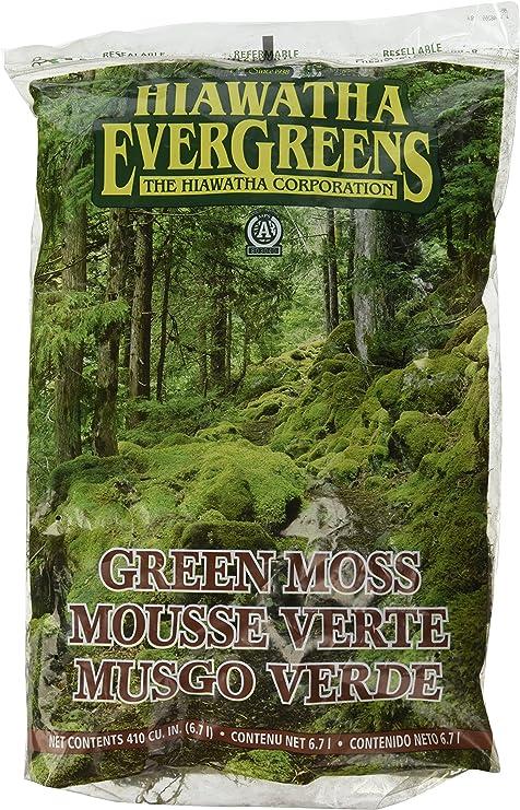 Amazon Com Hiawatha 100055137 Evergreens Green Decorator Moss In
