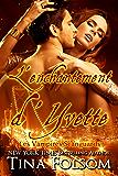 L'Enchantement d'Yvette (Les Vampires Scanguards t. 4)