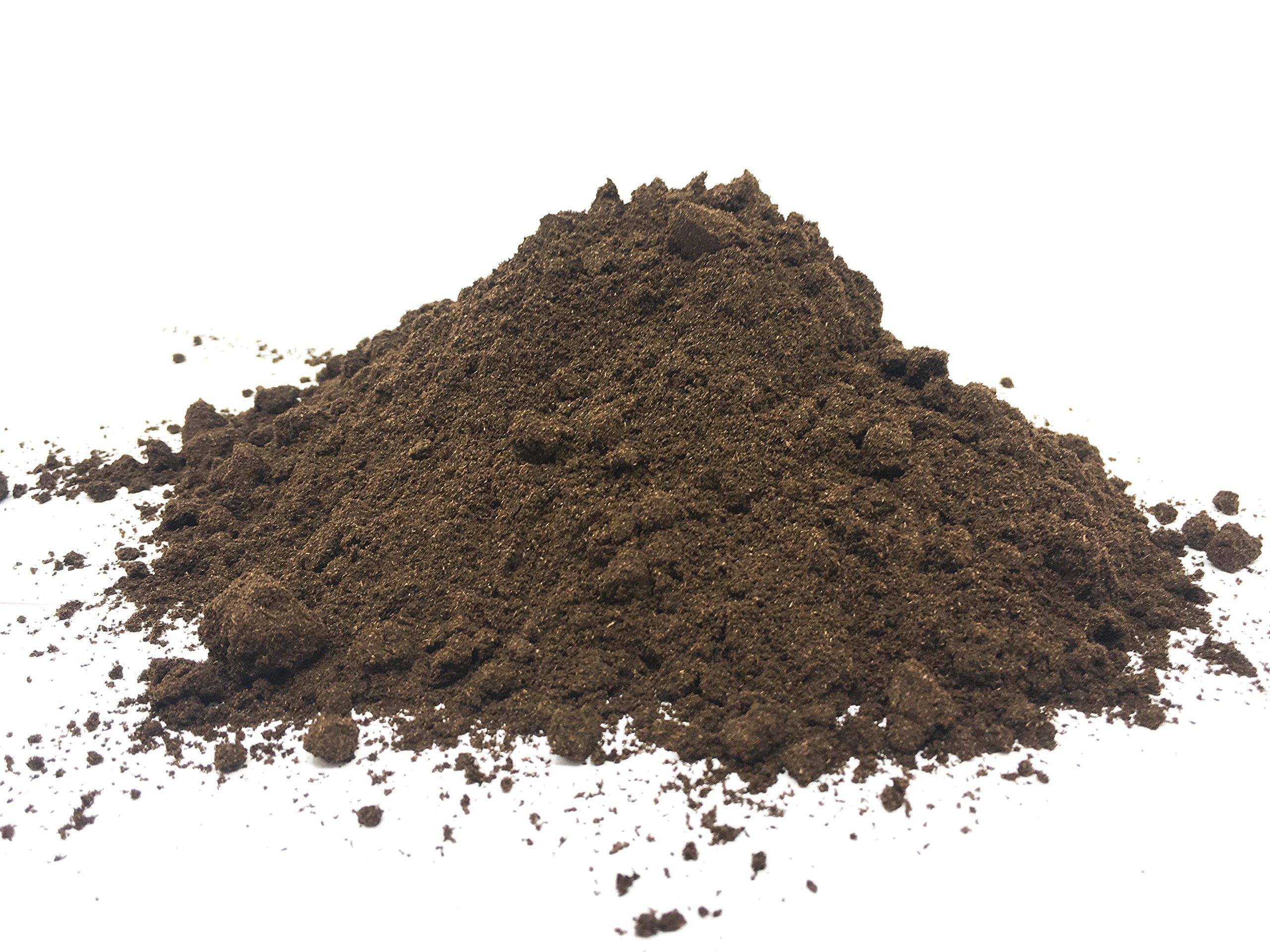 Madagascar Vanilla Bean Powder (Ground Vanilla Bean Powder) by Slofoodgroup Gourmet Grade (.5 ounce vanilla bean powder)