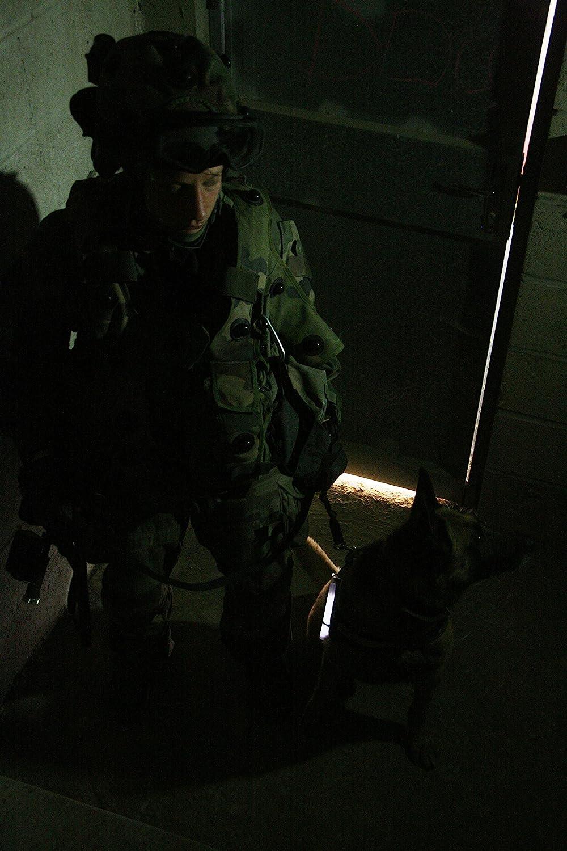 Luz Sticks muy brillantes con duraci/ón de 8 horas Cyalume Barra de luz blanca militar ChemLight Lightsticks 15cm Caja de 10