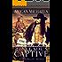 The Renegade's Captive (The Widow Wagon Book 4)