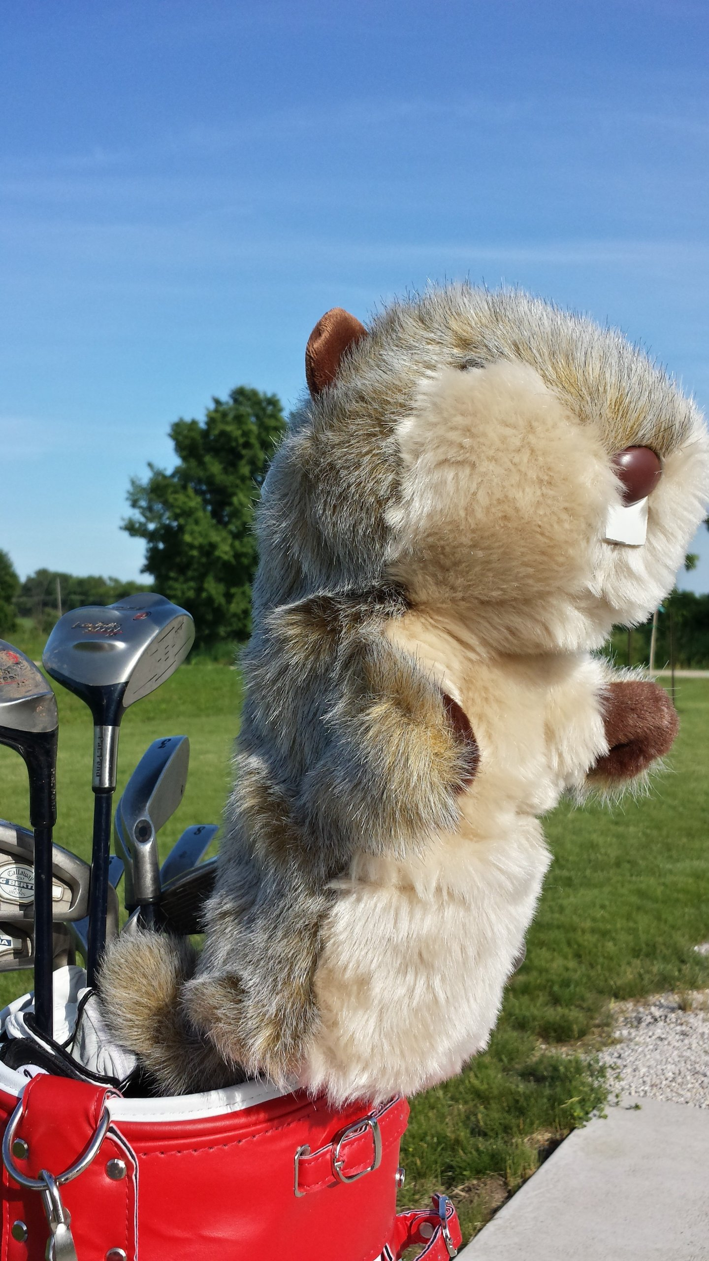 Oversized Gopher Caddyshack Golf Head Cover