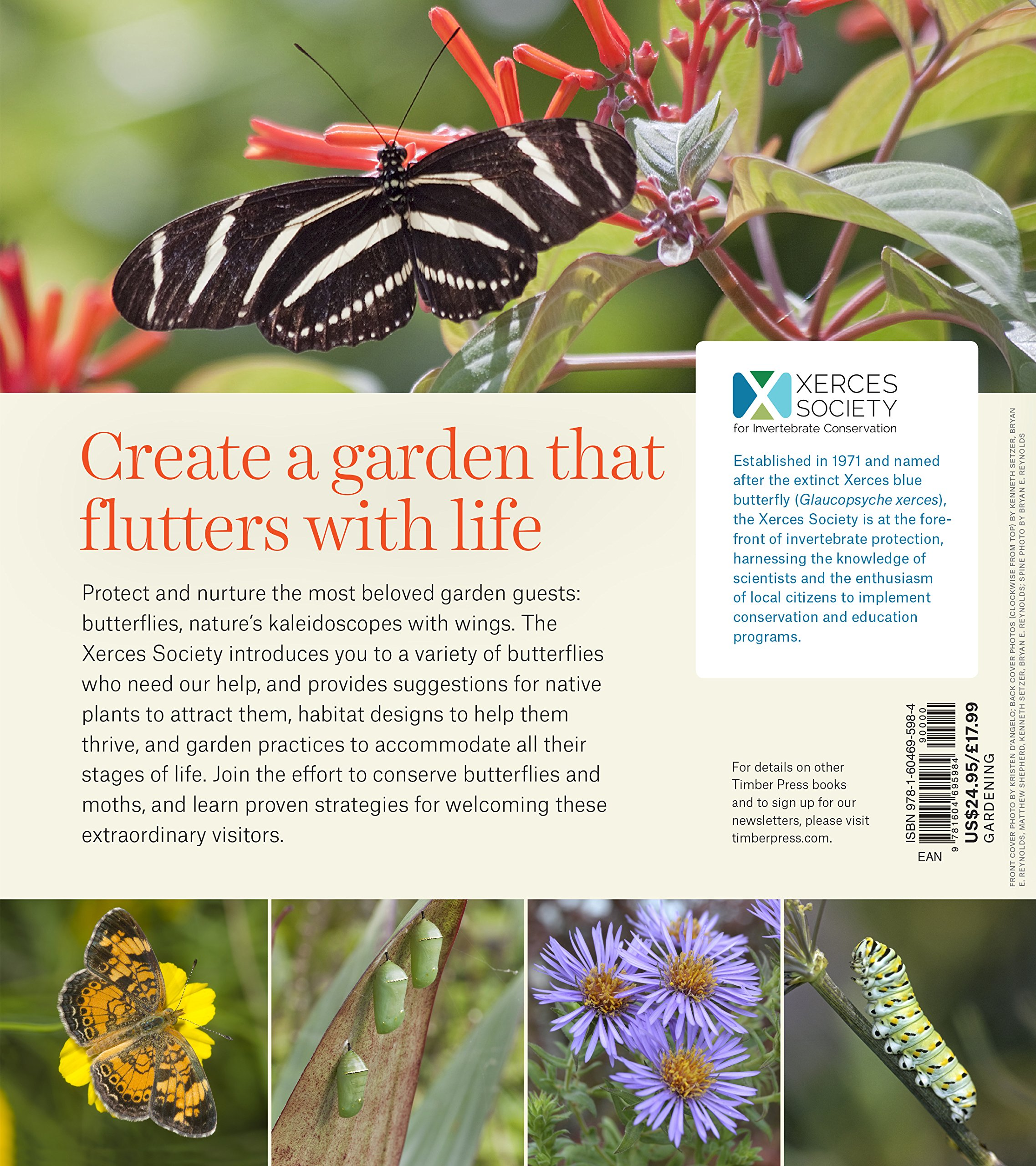 Gardening for Butterflies: How You Can Attract and Protect ...