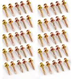 Hangman Double-Headed Bear Claw Screws for Saw Tooth's- Gold (BCK-50)