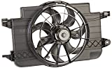 ACDelco 15-81591 Professional Engine Cooling Fan