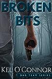 Broken Bits (DAG Team Series Book 1)