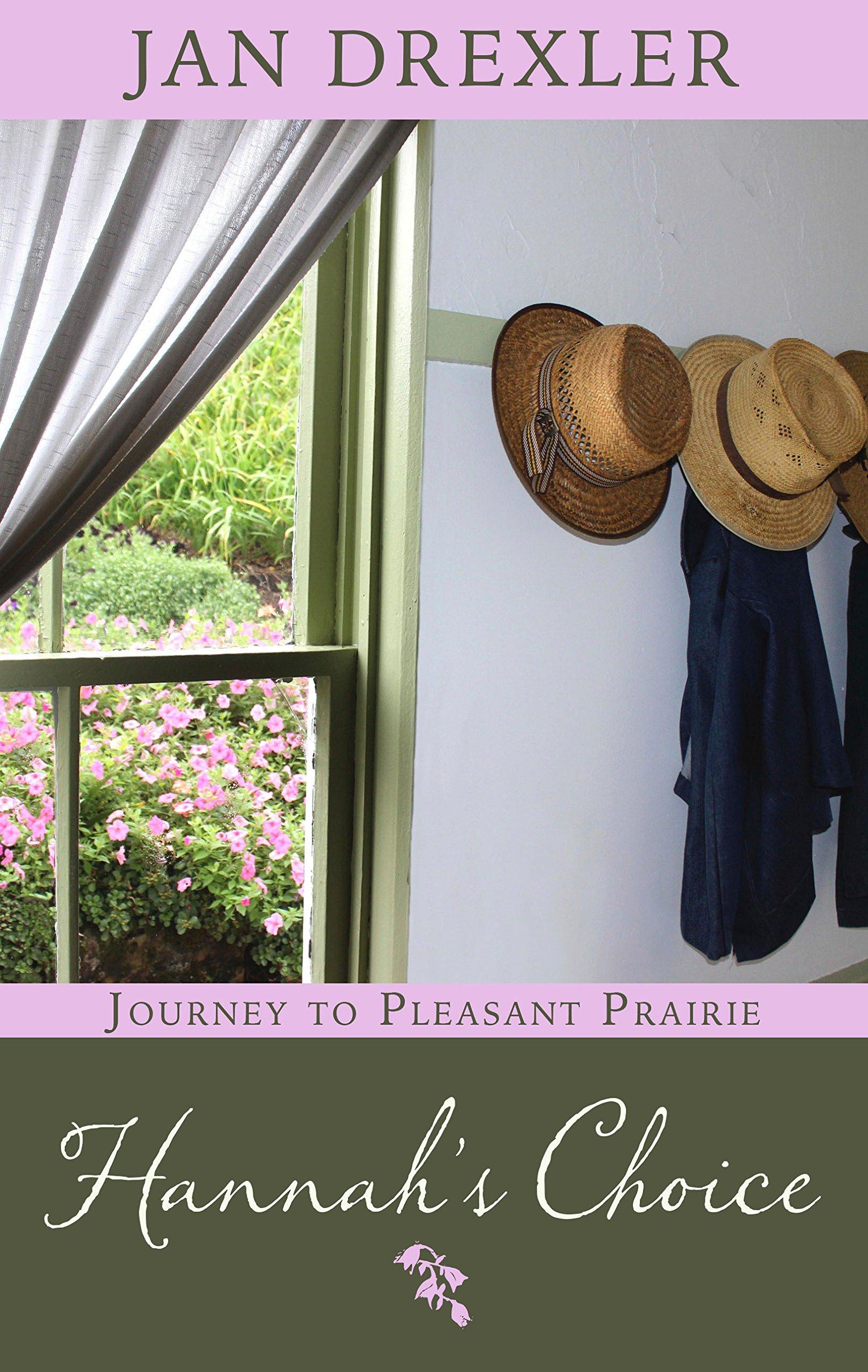Hannah's Choice (Journey to Pleasant Prairie): Amazon.co.uk: Jan Drexler:  9781410487742: Books