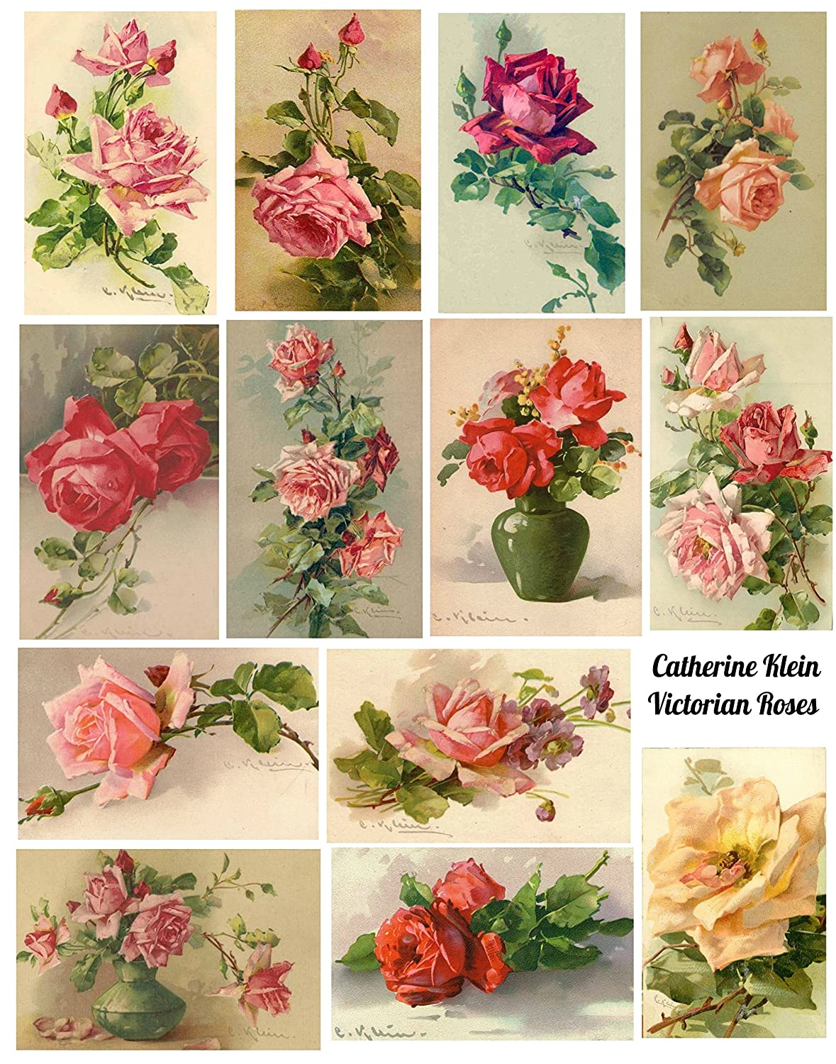 Catherine Klein Vintage Victorian Roses Collage Sheet 8.5 x 11' Watercolor Roses Art for Scrapbooking, Card Making Paper Moon Media