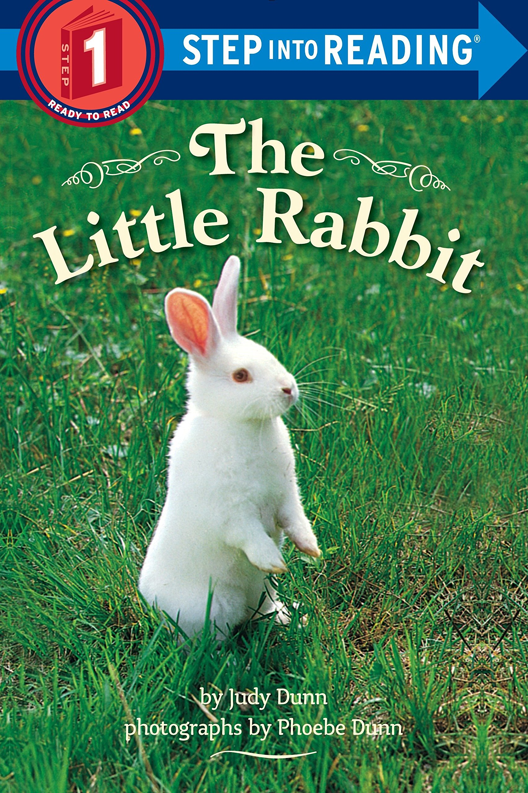 The Little Rabbit  Step Into Reading