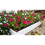 Handy bed 2 x 4 Stack-able, White, Vinyl, Raised Garden Bed
