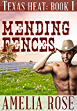 Mending Fences (Contemporary Cowboy romance) (Texas Heat Book 1)