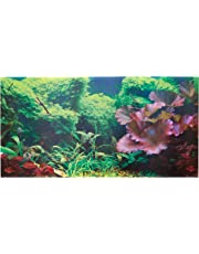 Aquarium D 233 Cor Backgrounds Amazon Com