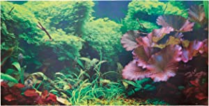 "SPORN Aquarium Background, Static Cling, Tropical 36"" x 18"""