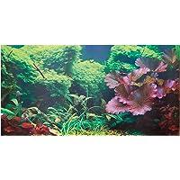 Amazon Best Sellers Best Aquarium D 233 Cor Backgrounds