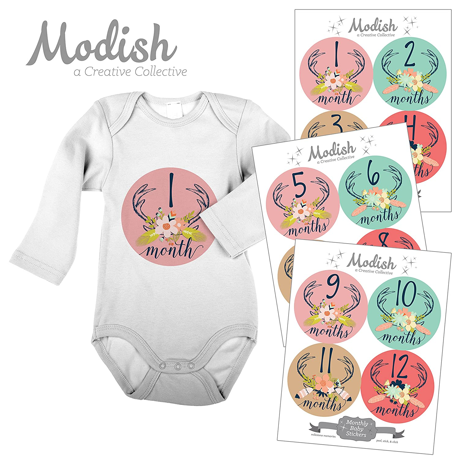 正規品販売! 12 Red, Monthly Girl Baby Stickers, Deer Antlers, Baby Girl, Flowers, Feathers, Baby Belly Stickers, Monthly Onesie Stickers, First Year Stickers Months 1-12, Pink, Rose, Red, Mint, Teal, Beige, Tan, Brown, Navy Blue, Baby Girl by Modish - Creative Collective B00XGXUUOO, パソコンショップ ぱそくる:a8d33640 --- mvd.ee