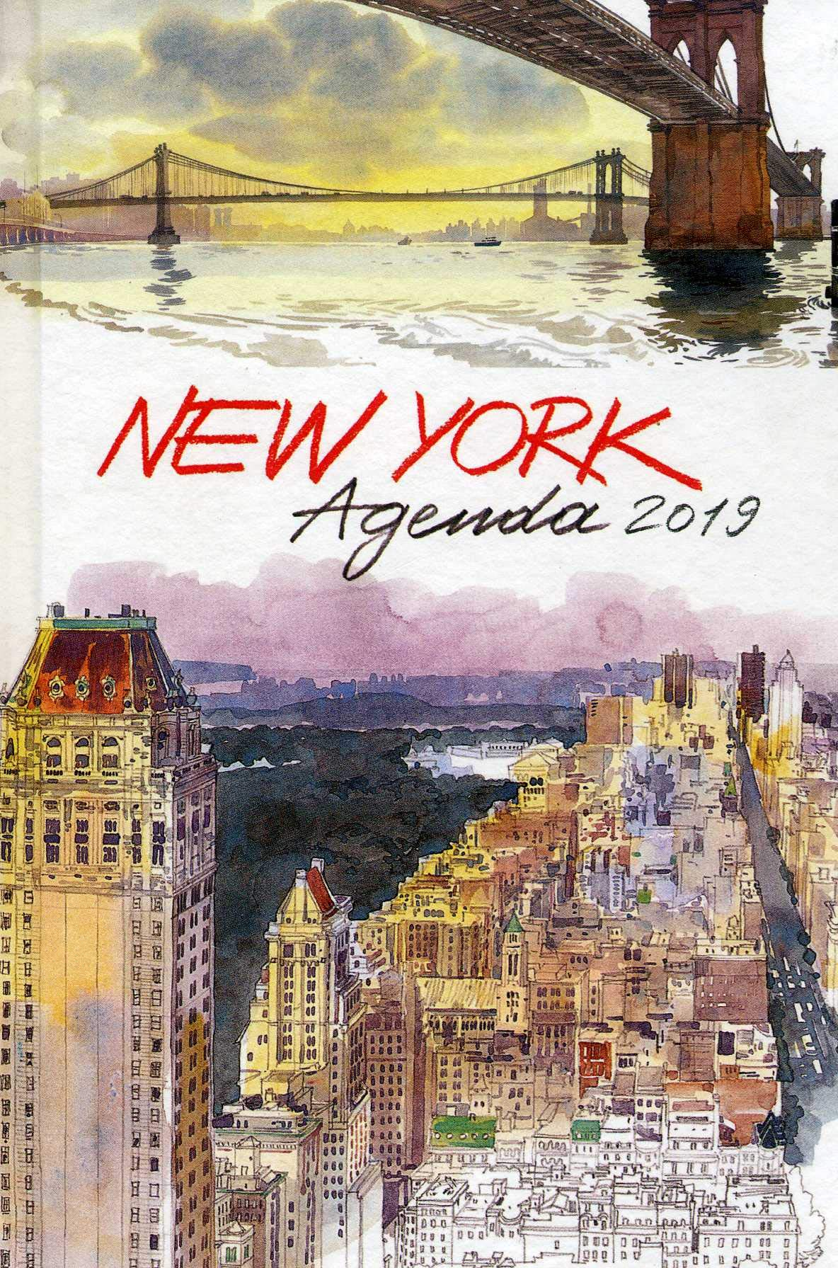 New York Agenda 2019: Edition Didier Millet: 9789814610650 ...