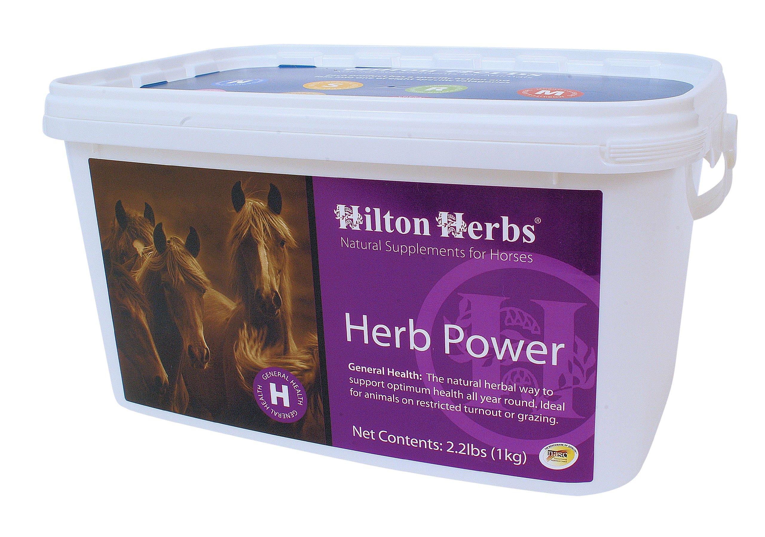 Hilton Herbs General Herb Power Natural Vitamin Supplement for Horses, 1kg Tub by Hilton Herbs