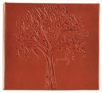 Amazoncom Pinnacle Frames And Accents Family Tree Embossed Photo