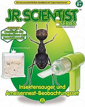 Mundo de Insectos con Aspirador de Insectos/ Nido de Hormigas + ...