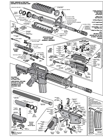 Ar Parts Diagram High Quality Clip Art Vector