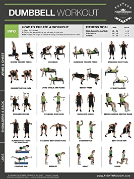 Mancuernas ejercicios Poster PLASTIFICADO gráfico – ft – entrenamiento de fuerza – Core – Pecho –