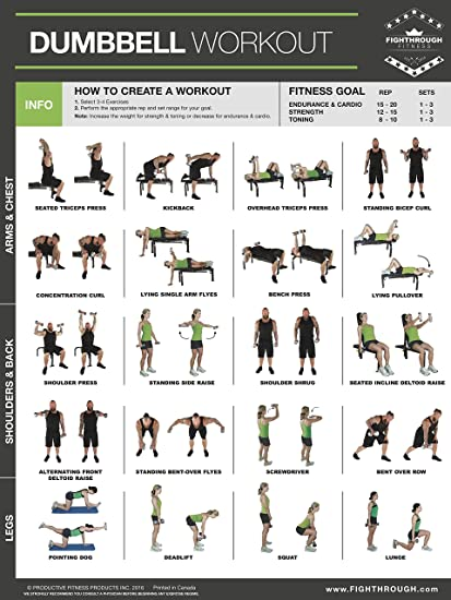 """Dumbbell Exercises Laminated Poster Chart - Strength Training - Core -  Chest - Legs - Shoulders & Back - Build Muscle, Tone Tighten - 18""""x24"""