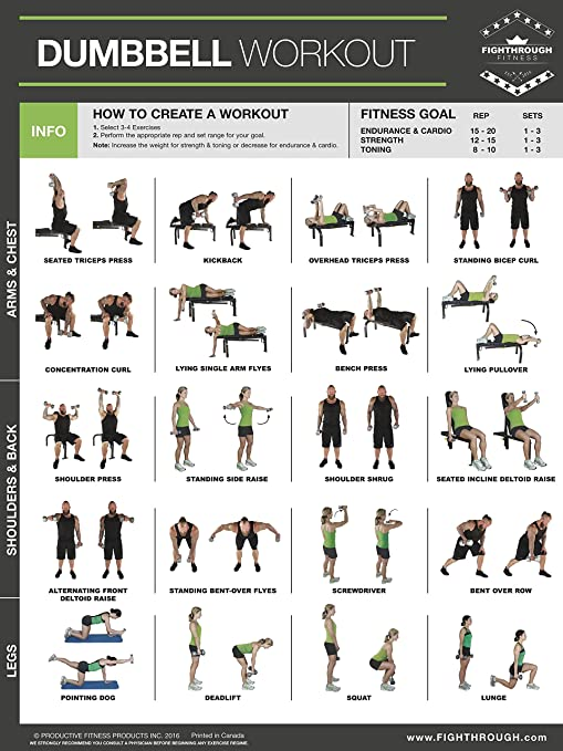 Amazon com dumbbell exercises laminated poster chart strength