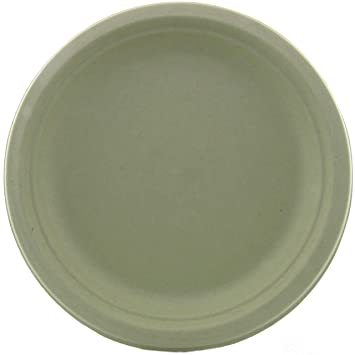 Amazon.com World Centric\u0027s Biodegradable and Compostable Wheat Straw 9\  Plates (Package of 200) Kitchen \u0026 Dining  sc 1 st  Amazon.com & Amazon.com: World Centric\u0027s Biodegradable and Compostable Wheat ...