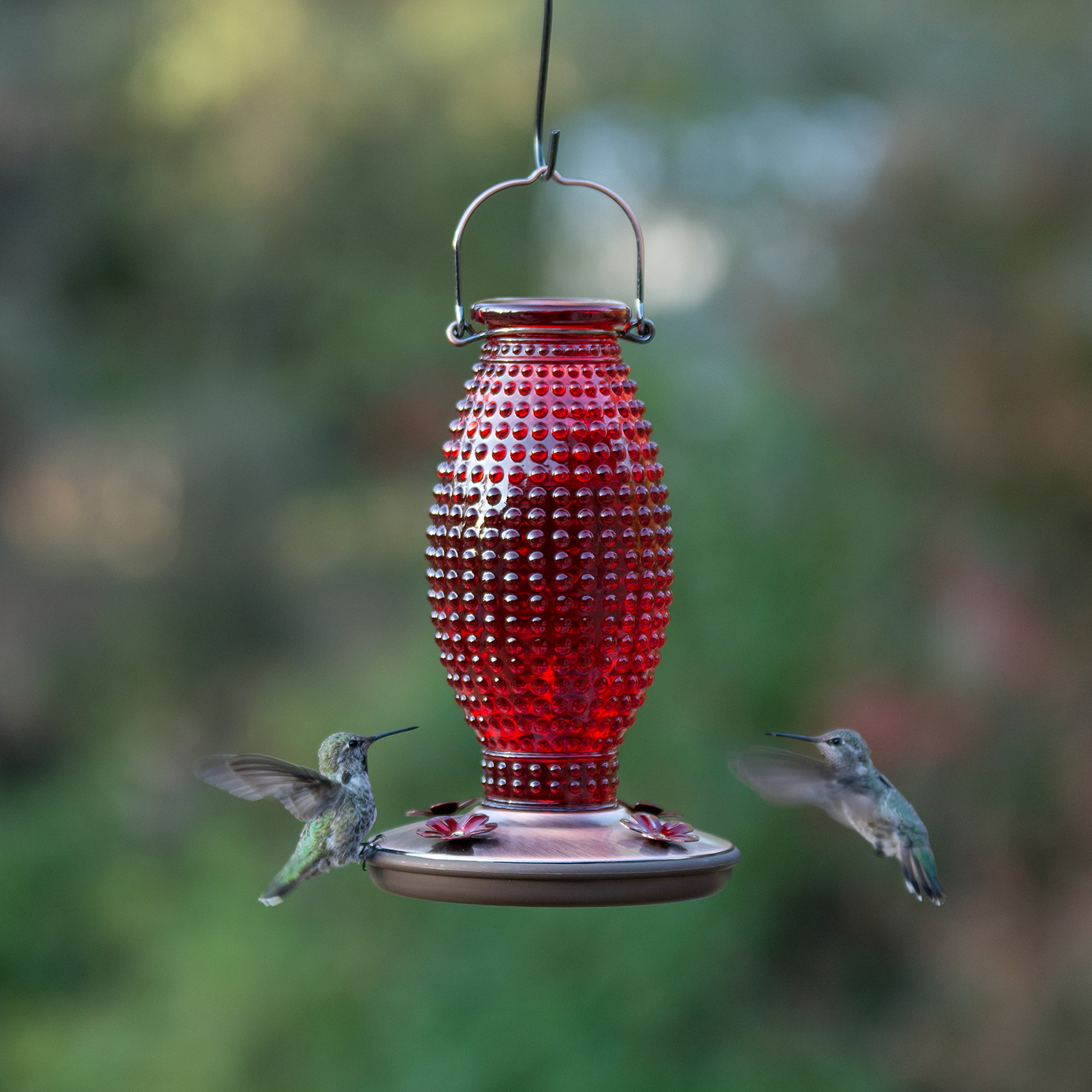 Perky-Pet Red Hobnail Vintage Glass Hummingbird Feeder 8130-2 by Perky-Pet (Image #7)