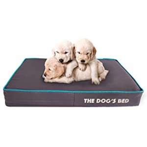 The Dog's Bed Premium Orthopedic Memory Foam Waterproof Dog Beds