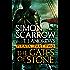 Pirata: The Gates of Stone: Part two of the Roman Pirata series