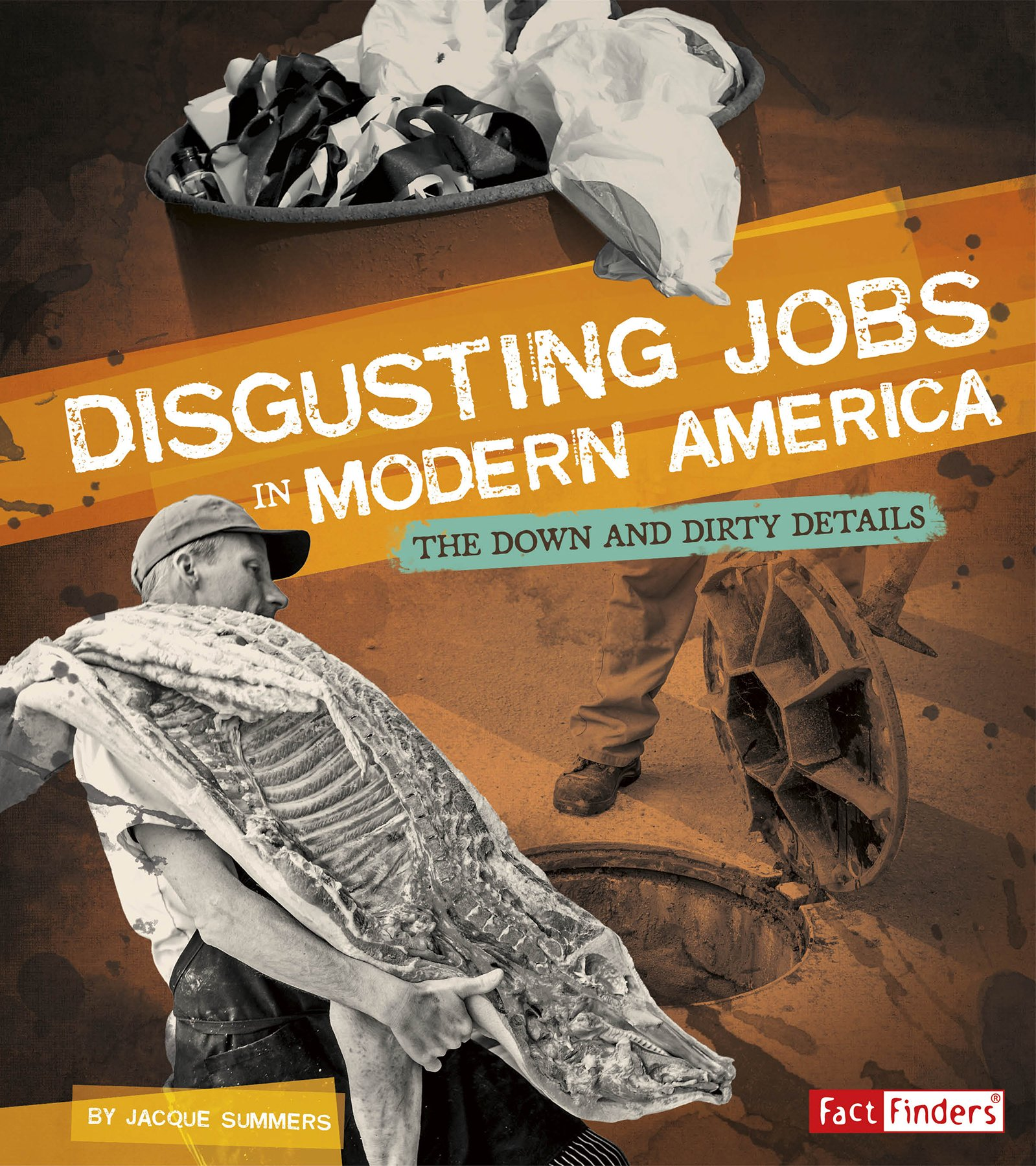 Disgusting Jobs in Modern America: The Down and Dirty Details (Disgusting Jobs in History)