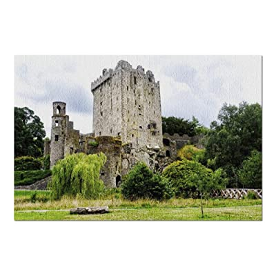 Ancient Ruins of Castle in Blarney, Ireland 9019113 (Premium 1000 Piece Jigsaw Puzzle for Adults, 20x30, Made in USA!): Toys & Games