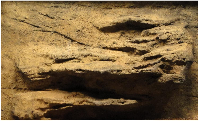 Universal Rocas 91,44cm por 40,6cm cornisa Acuario/Fondo de Espuma rígida de Piel de Serpiente Universal Rocks LLC 36x16-LEDGE-F