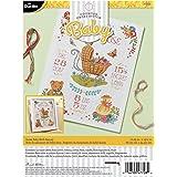 Bucilla Sweet Baby Birth Record Kit