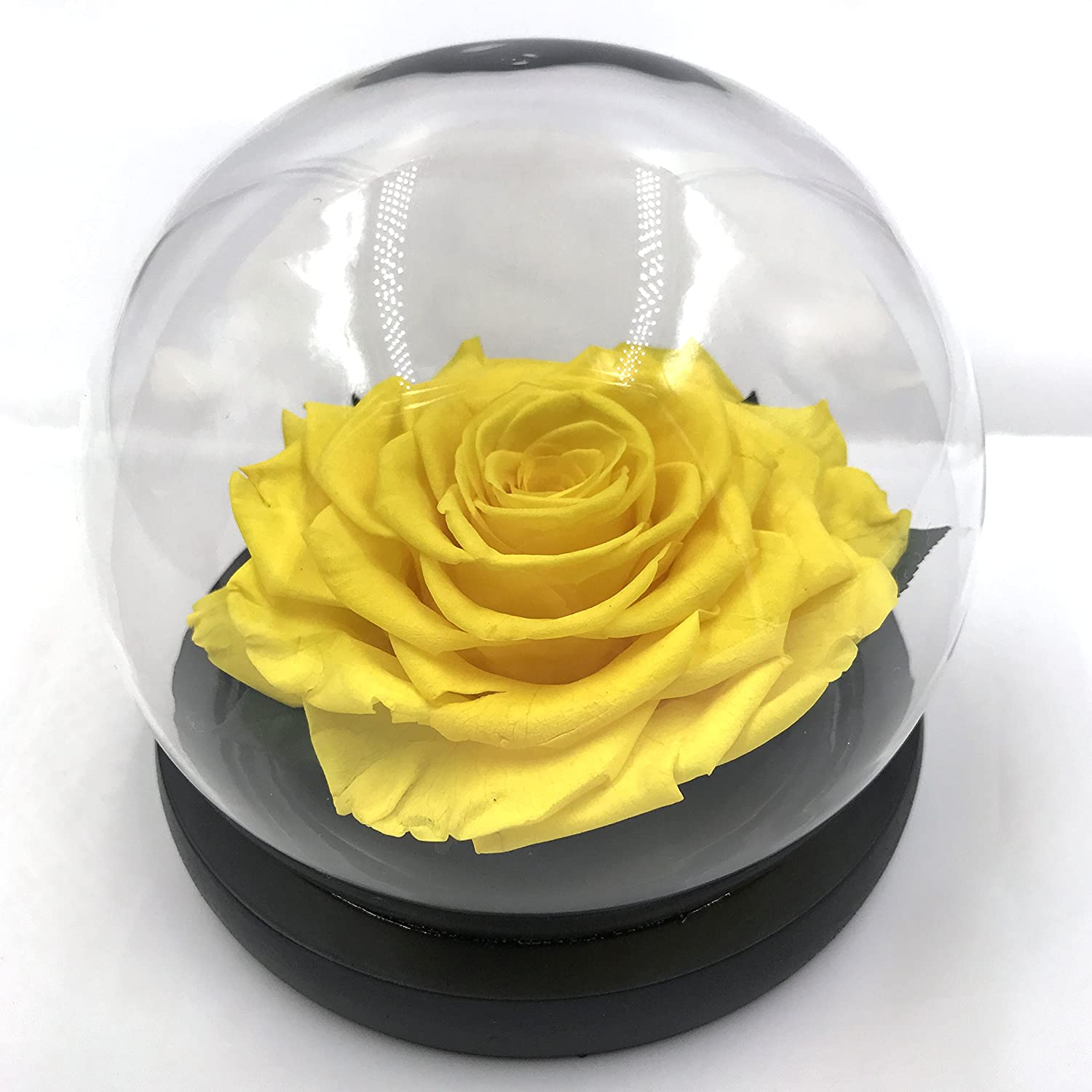 Amazon The Glass Dome Eternal Rosegift For Valentines Day