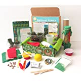 Green Kid Crafts, Rainforest Science Discovery Box