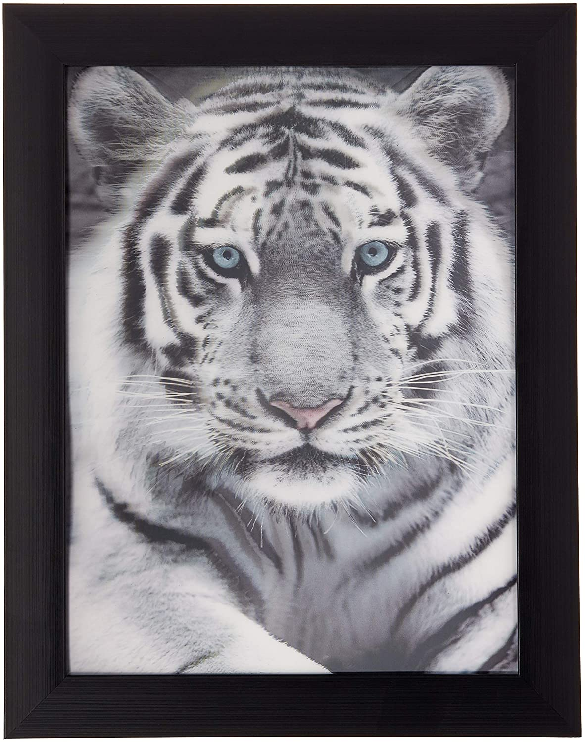 Lees collection holographic 15 inches x 19 inches white tiger 3d animated picture with black frame