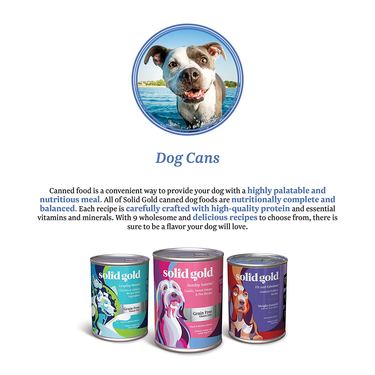 Amazon : Solid Gold Green Cow Beef Tripe & Beef Broth Recipe For Dogs;  Natural, Holistic & Grain Freeplete & Balanced Meal Or Topper;