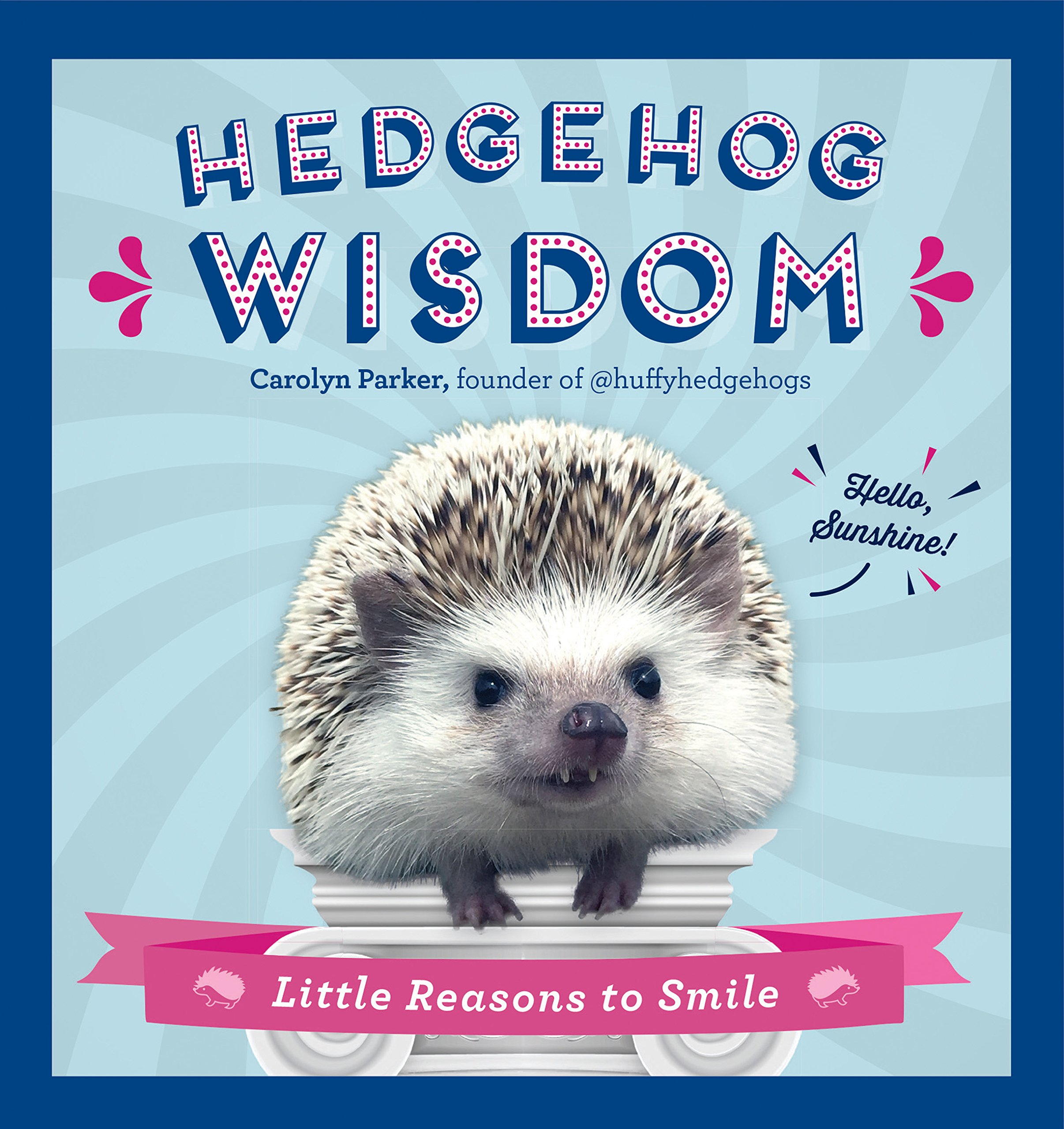 How To Make A Book Hedgehog ~ Hedgehog wisdom little reasons to smile carolyn parker