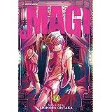 Magi: The Labyrinth of Magic, Vol. 14