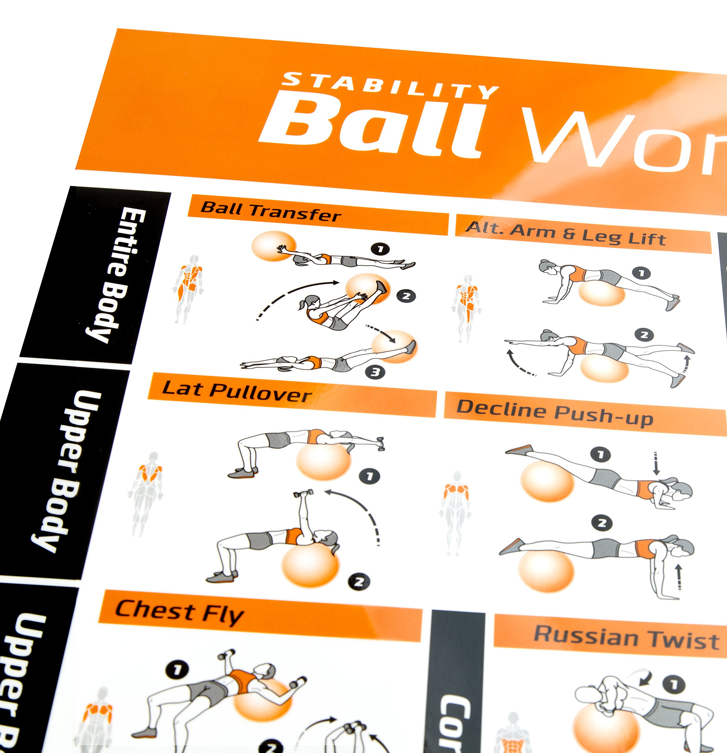 Total gym poster workout poster with total gym poster total gym exercise ball poster laminated total body workout personal trainer fitness program swiss yoga balance stability ball home gym poster tone your with total fandeluxe Image collections